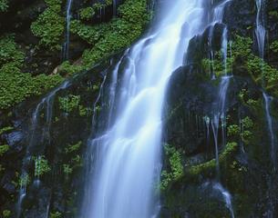幕滝の流れ 福島県の写真素材 [FYI03192140]
