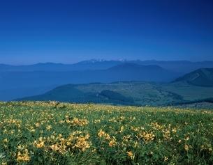 ニッコウキスゲ咲く高原と北アルプス   霧が峰 長野県の写真素材 [FYI03192153]