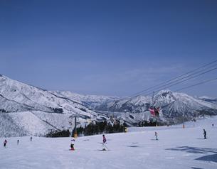 神立高原スキー場 新潟県の写真素材 [FYI03192378]
