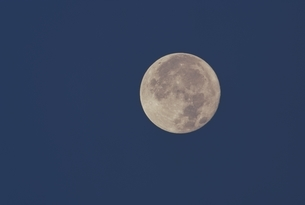 満月の写真素材 [FYI03192773]