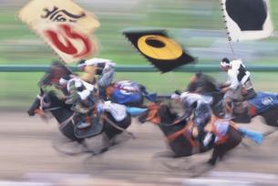 相馬野馬追い祭の甲冑競馬 原町市 福島県の写真素材 [FYI03192781]