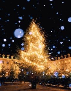 夜のクリスマスツリーの輝きと雪 パリ フランスの写真素材 [FYI03193065]