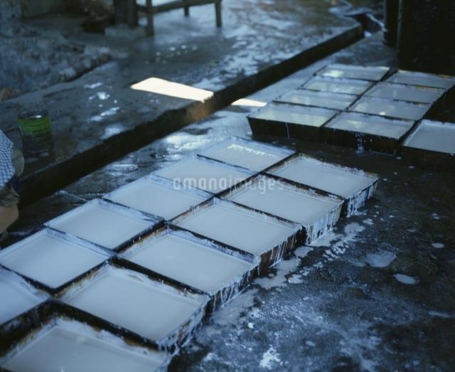 ゴムプランテーションのゴム樹液採取箱 マレーシアの写真素材 [FYI03193561]