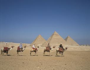 ギザの三大ピラミッドとキャラバン隊 エジプトの写真素材 [FYI03193692]