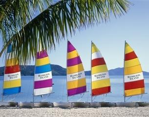 ハミルトンリゾートビーチのヨット5艘   オーストラリアの写真素材 [FYI03193795]