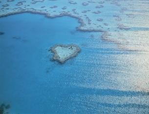 ハーディーリーフ内の珊瑚礁空撮 グレートバリアリーフの写真素材 [FYI03193801]