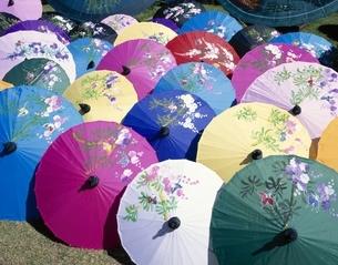 ボーサンの日傘   チェンマイ タイの写真素材 [FYI03193902]