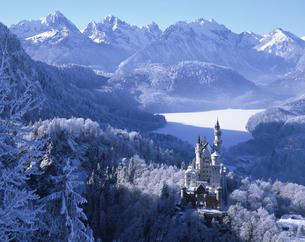 厳冬期のノイシュバンシュタイン城 ドイツの写真素材 [FYI03193977]