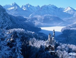ノイシュバンシュタイン城の雪景色 冬 ドイツの写真素材 [FYI03193980]