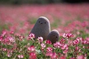 石の鳥の写真素材 [FYI03194135]