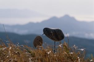 石の鳥の写真素材 [FYI03194144]