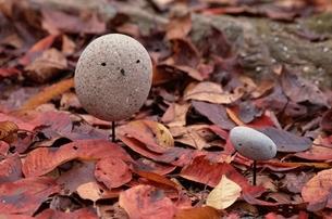 石の鳥の写真素材 [FYI03194149]