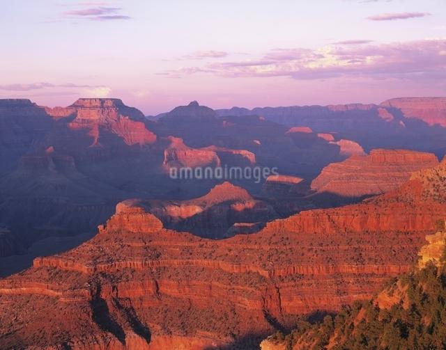 ヤバパイポイントの夕景 グランドキャニオン アリゾナ州の写真素材 [FYI03194222]