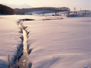 凍れる朝の風景と小川     美瑛 北海道の写真素材 [FYI03194687]