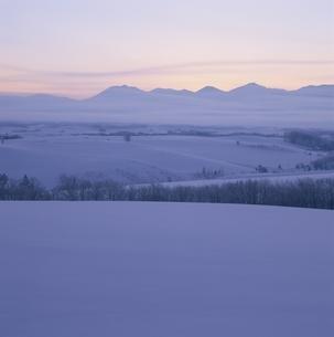 日の出前の丘  美瑛 北海道の写真素材 [FYI03194920]
