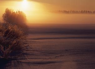 日の出に輝くの写真素材 [FYI03195104]
