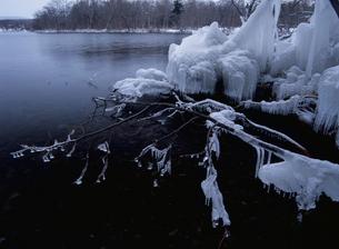 つららの凍る弟子屈湖の写真素材 [FYI03195299]