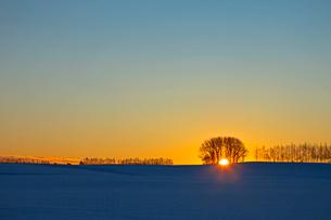 雪原と日の出 帯広の写真素材 [FYI03195868]