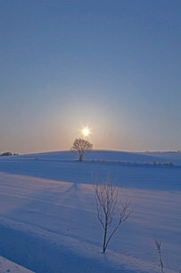 雪原と日の出 美瑛の写真素材 [FYI03195875]
