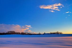 日の出前の雪原 帯広の写真素材 [FYI03195892]