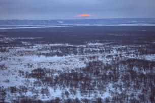 湿原の日の出の写真素材 [FYI03195940]