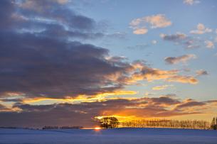 日の出前の雪原の写真素材 [FYI03196130]