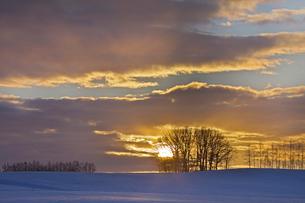 日の出と雪原の写真素材 [FYI03196137]
