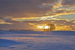 日の出と雪原の写真素材 [FYI03196141]