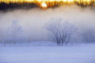 川霧と日の出の写真素材 [FYI03196343]