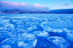日の出前の流氷の写真素材 [FYI03196585]