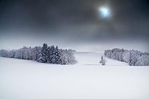 濃霧の合間の写真素材 [FYI03196967]