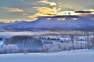 大雪山連峰からの日の出と彩雲の写真素材 [FYI03196974]