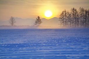 朝霧の日の出の写真素材 [FYI03197037]