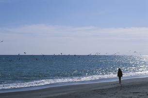 海辺と日本人女性の風景の写真素材 [FYI03197184]