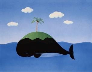 クジラの島 夏 イラストのイラスト素材 [FYI03197192]