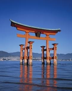 厳島神社の大鳥居  広島県の写真素材 [FYI03197774]