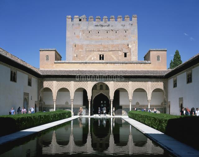 アルハンブラ宮殿の天人花のパティオとコマ-レスの搭 スペインの写真素材 [FYI03198009]