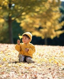 イチョウの葉を持つ日本人の男の子の写真素材 [FYI03198337]