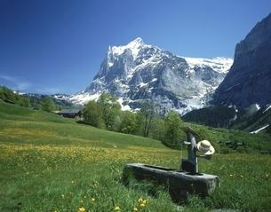 雪のヴェッターホルンと丘の水飲み場 グリンデルワルド スイスの写真素材 [FYI03198407]