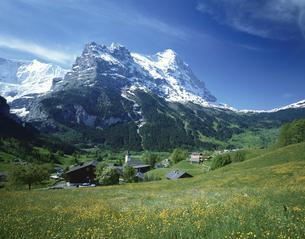 アイガーの教会 グリンデルワルト スイスの写真素材 [FYI03198410]