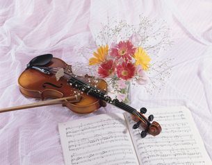 バイオリンと楽譜と花の写真素材 [FYI03198427]