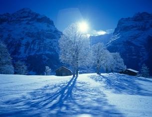 霧氷の木と太陽の光と影(ブルー) グリンデルワルト スイスの写真素材 [FYI03198440]
