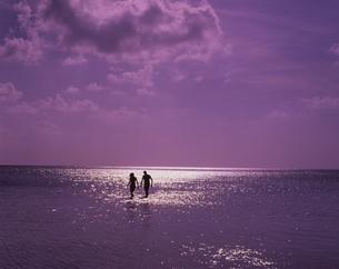 光る海と人物2人のシルエットの写真素材 [FYI03198459]