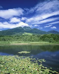 妙高山といもり池  新潟県の写真素材 [FYI03198484]