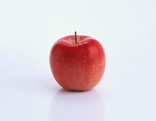リンゴ(陸奥)の写真素材 [FYI03198572]
