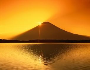 黎明富士山と田貫湖 静岡県の写真素材 [FYI03198593]