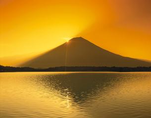 黎明富士山と田貫湖の夕景 静岡県の写真素材 [FYI03198594]