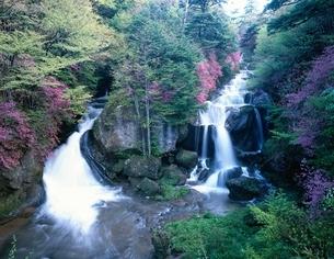 龍頭の滝の流れ   栃木県の写真素材 [FYI03198668]