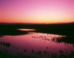 朝の能取湖の写真素材 [FYI03198762]