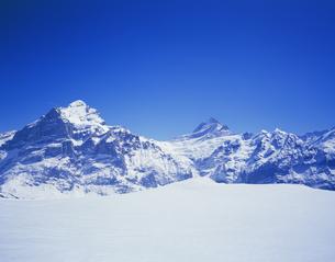 冬のベルナーオーバーランド山群とスキーコースの写真素材 [FYI03198885]